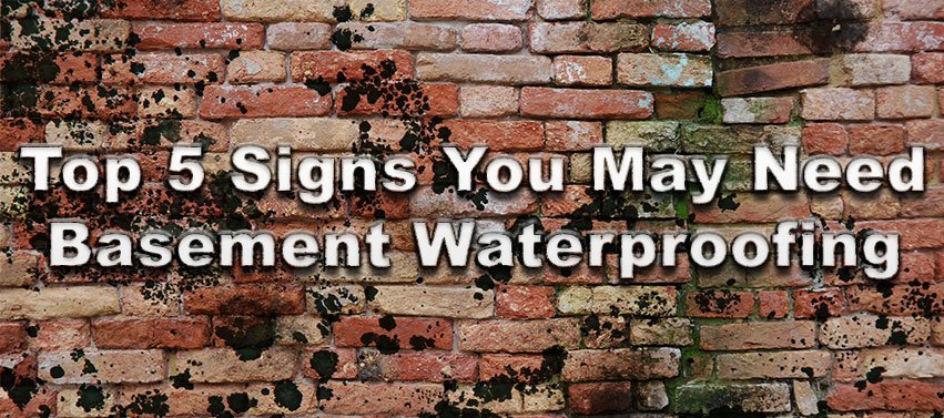 Top 5 Signs You May Need Basement Waterproofing