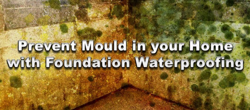 Prevent Mould in your Home with Foundation Waterproofing