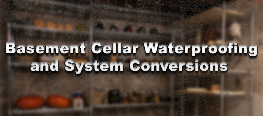 Basement Cellar Waterproofing and System Conversions