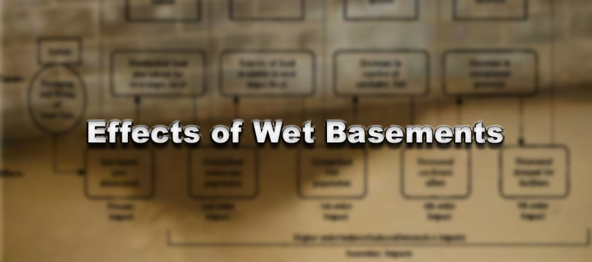 Effects of Wet Basements